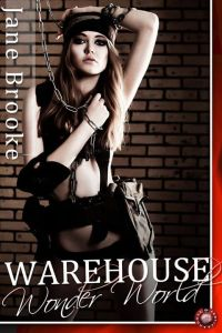 warehousewonderworldcover